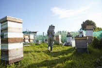 Women beekeepers working on city allotment — Stock Photo