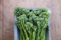 Ванна свіжі broccolini на столі, вид зверху — стокове фото