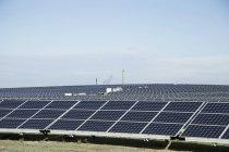 Field of solar panels under blue sky — Stock Photo
