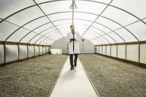 Scientifique à l'aide de tablette numérique en usine croissance recherche centre poly tunnel — Photo de stock