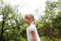 Little girl amongst trees — Stock Photo