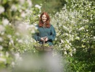Woman With Apple Blossom In Orchard — Stock Photo