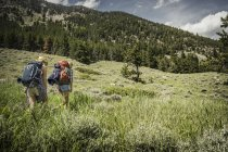 Rear view of teenage girl and young female hiker hiking up mountain, Red Lodge, Montana, USA — Stock Photo