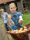 Girl with apple basket eating apples — Stock Photo