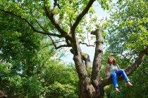 Souriante jeune fille assise sur l'arbre à l'extérieur — Photo de stock