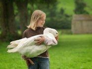 Girl Holding Goose на ферме — стоковое фото