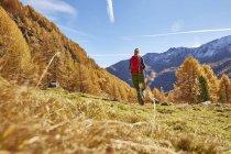 Frau Wandern, hintere Ansicht, Schnalstal, Südtirol, Italien — Stockfoto