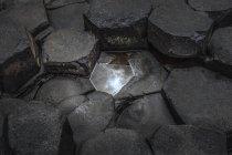 Заделывают гексагональной скал, гиганты Козвэй, Бушмилс, Антрим, Северная Ирландия, Великобритания — стоковое фото