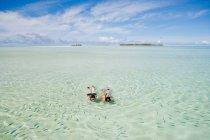 Середині підводне плавання дорослого пара і дивлячись на риби — стокове фото