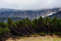 Chornogora Ridge Landscape, Carpathian Mountains, Ivano-Frankovsk Region, Ucrânia — Fotografia de Stock