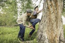 Вид сбоку на человека, помогающего улыбающемуся мальчику забраться на дерево — стоковое фото
