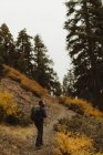 Vista posteriore dell'escursionista maschio, Mineral King, Sequoia National Park, California, USA — Foto stock