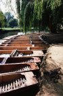 Rowing boats moored in a row — Stock Photo