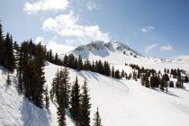 Ski resort in utah usa — Stock Photo