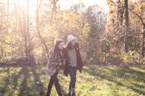 Amigos felizes andando na floresta outonal ensolarada — Fotografia de Stock