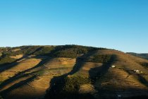 Green hills under clear blue sky, Portugal — Stock Photo