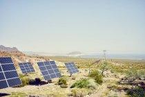 Fila de paneles solares en paisaje con el río Colorado en la distancia - foto de stock