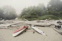 Tavole da surf sulla spiaggia nebbiosa — Foto stock