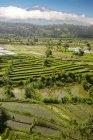 Гунунг-Абанг — стоковое фото