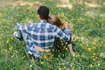 Rear view of couple sitting on grass hugging — Stock Photo