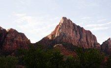 Zion parque nacional, utah, EE.UU. - foto de stock