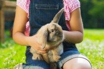 Обрезанное изображение ребенка, держащего кролика во дворе — стоковое фото