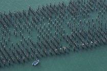 Vista aérea de pilares de cais e barco, Melbourne, Victoria, Austrália — Fotografia de Stock
