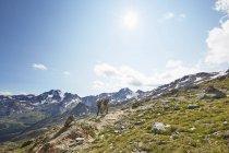Parejas jóvenes caminando por el Glaciar Val Senales, Val Senales, Tirol del Sur, Italia - foto de stock