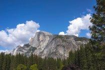 Vista de montanha rochosa e floresta, Parque Nacional de Yosemite, Califórnia, EUA — Fotografia de Stock