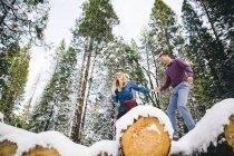 Coppia in legno arrampicata su tronchi innevati — Foto stock