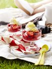 Rhubarb fool dessert portions on picnic blanket, close up — Stock Photo