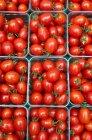 Plum tomatoes in contenitori — Foto stock