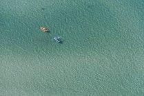 Vista aérea de dos kayaks de mar, Melbourne, Victoria, Australia - foto de stock