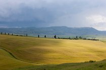 Сільських ландшафтів регіону Валь dorcia — стокове фото