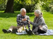 Older couple toasting each other — Stock Photo