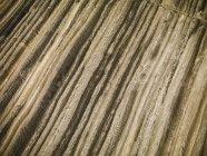 Стрип-уголь — стоковое фото