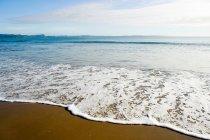 Scenic view of shore at Hauraki Gulf, Auckland — Stock Photo