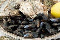 Cozze e ostriche accumulano limone umido su vassoio di metallo — Foto stock
