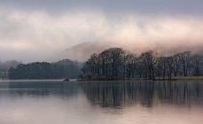 Nebel, die ländliche Landschaft überrollen — Stockfoto