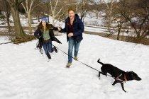 Jeune couple courant avec chien à Central Park enneigé, New York, USA — Photo de stock