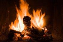 Журналы, сжигания в открытом огне — стоковое фото