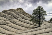 Живописный вид белого карман, Paria плато, Аризона, США — стоковое фото