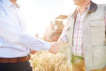 Cropped view of farmer and businessman in wheat field shaking hands — Stock Photo