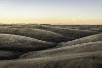Пейзаж зрения степные холмы на закате — стоковое фото