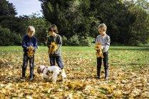Tre ragazzi che giocano all'aperto con il cane da compagnia, raccogliendo foglie autunnali — Foto stock