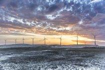 Turbinas eólicas ao pôr do sol, Taiba, Ceará, Brasil — Fotografia de Stock