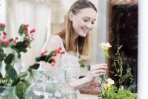 View through glass of  woman arranging flowers looking down smiling — Stock Photo