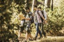 Quatro caminhantes do sexo masculino lendo mapa enquanto caminhavam na floresta, Deer Park, Cidade do Cabo, África do Sul — Fotografia de Stock