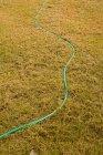 Erhöhte Ansicht der grünen Gartenschlauch auf Rasenfläche — Stockfoto