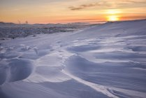 Windswept snow covered field under sunset sky — Stock Photo
